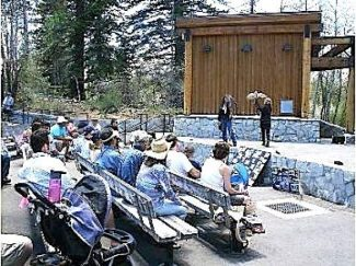The fourth annual Lake Tahoe Bird Festival returns to the South Shore June 8. U.S. Forest Service Lake Tahoe Basin Management Unit / Provided to the Tribune