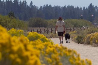 A dog owner walks his dog along the path at South Lake Tahoe's Cove East Tuesday.
