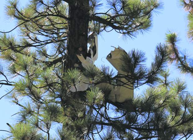 A portion of the single-engine plane's tail broke off in a tree near the crash site. The single-engine plane is believed to have clipped a few trees before striking the ground near a South Lake Tahoe Residence located near Pioneer Trail and Lake Tahoe Airport.