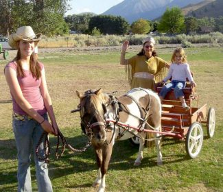 Pony and wagon rides will be available at the first annual Pony and Pumpkin Festival, held Oct. 12 and 13.