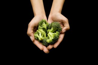 Human hands holding broccoli in cupped hands