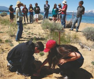 Provided by EdgewoodGretchen Huie, environmental scientist with Nevada Tahoe Conservation District (standing, second from left) oversees the first planting of a Tahoe yellow cress by South Tahoe High School students Jocelyn DeLeon, a senior,  and Leighton Cook, a junior, on Saturday at Edgewood.