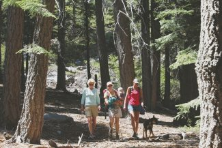 Susanne Haala / Tahoe Daily TribuneLake Tahoe visitors Dulcy Zoellner, from left, Carine Schlesinger, her 2-year-old daughter Kinley, Kendra King and dog Kirby hike on Eagle Falls Trail Friday afternoon. The U.S. Forest Service has released the environmental document for a plan that will guide management of Lake Tahoe forests for the next 15 years.