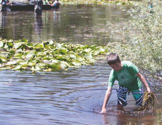 Trisha Leonard / Tahoe Daily TribuneForrest McCann, 10, hand-pulls Eurasian watermilfoil from a swale near Baldwin Beach on Tuesday afternoon as other fifth-graders (background) pull a bottom barrier into the swale.