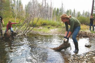 Provided to the TribuneDuring the League to Save Lake Tahoe's Tahoe Forest Stewardship Day in 2009, volunteers restore a section of General Creek by removing an abandoned beaver dam, which was restricting flow and increasing bank erosion during the spring runoff.