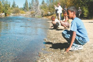Axie Navas / Tahoe Daily TribunePaul Rooney, 11, and his cousins Luke and Matthew Jones watch the salmon begin the final stage of their life cycle at Taylor Creek on Wednesday.