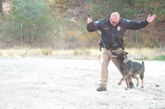 Axie Navas / Tahoe Daily TribuneSouth Lake Tahoe Police Officer Matt Morrison praises the department's newest four-legged officer, Quatro, at a training session on Oct. 11.