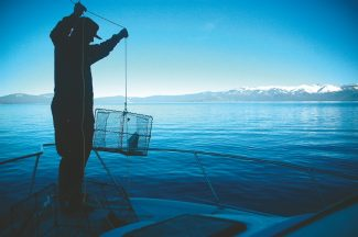 Axie Navas / Tahoe Daily TribuneJustin Pulliam hauls in a trap Tuesday. The number of crawfish in the traps has dropped as winter rolls into the basin.