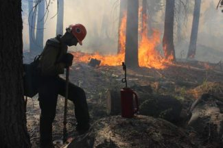A Hotshot fire crew member rests near a controlled burn operation at Horseshoe Meadows, as crews continue to fight the Rim Fire near Yosemite National Park in California on Sept. 4.