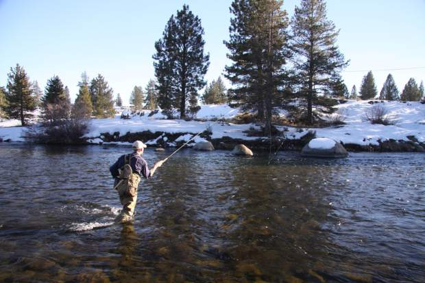 Fishing lake tahoe patience and prized catches for Tahoe fly fishing