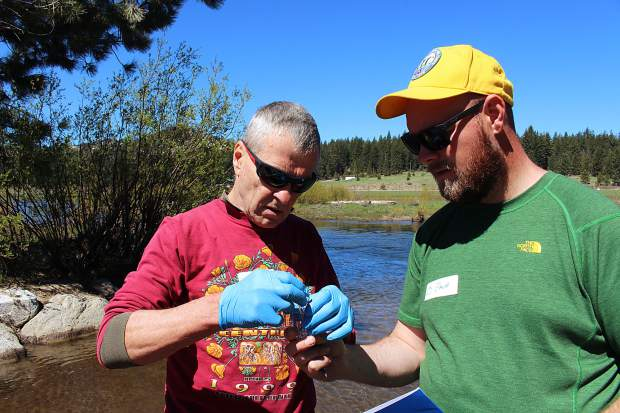 Greg Bergner and Zach McHenry measure water in the Upper Truckee River for dissolved oxygen as part of the community data-gathering event Tahoe Truckee Snapshot Day on Saturday, May 20. Volunteers collected water samples from tributaries around the basin and tested for temperature, pH level, nutrients, and bacteria.