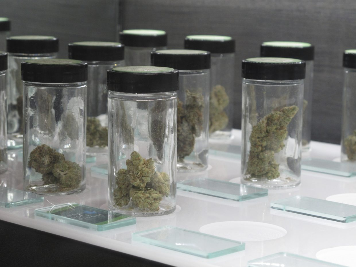 Nevada to launch latest legal vice for tourists: Pot
