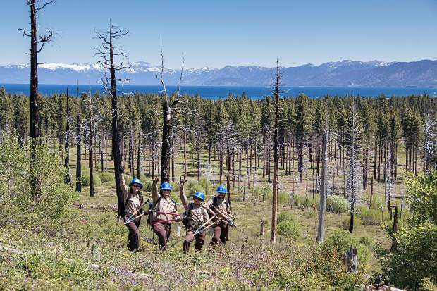 June 24 marks the 10th anniversary of the Angora Fire, which burned 3,100 acres of forest and 254 homes on Lake Tahoe' South Shore. On Saturday, June 10, 40 volunteers removed brush from approximately 400 trees in 3.3 acres and a half-mile of trail in the burn site. The League to Save Lake Tahoe orchestrated the outing with help from the U.S. Forest Service Lake Tahoe Basin Management Unit. Ernie's Coffee Shop, Rainbow Sprinkles Donuts and Frozen Yogurt, Peet's Coffee and CLIF Bar donated food and drinks for the day.
