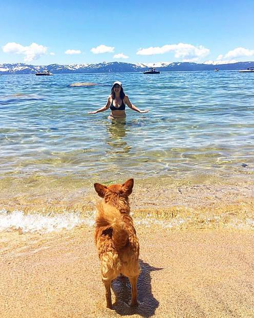 He's usually like my shadow but Chico definitely did not wanna get in the freezing water!