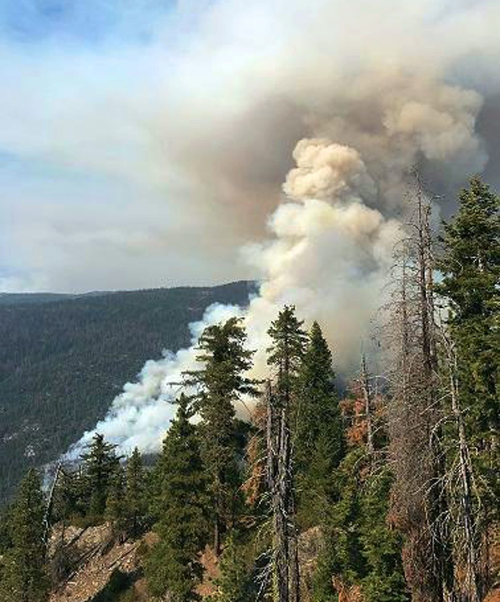 Evacuations Remain as Fire in Yosemite National Park Grows