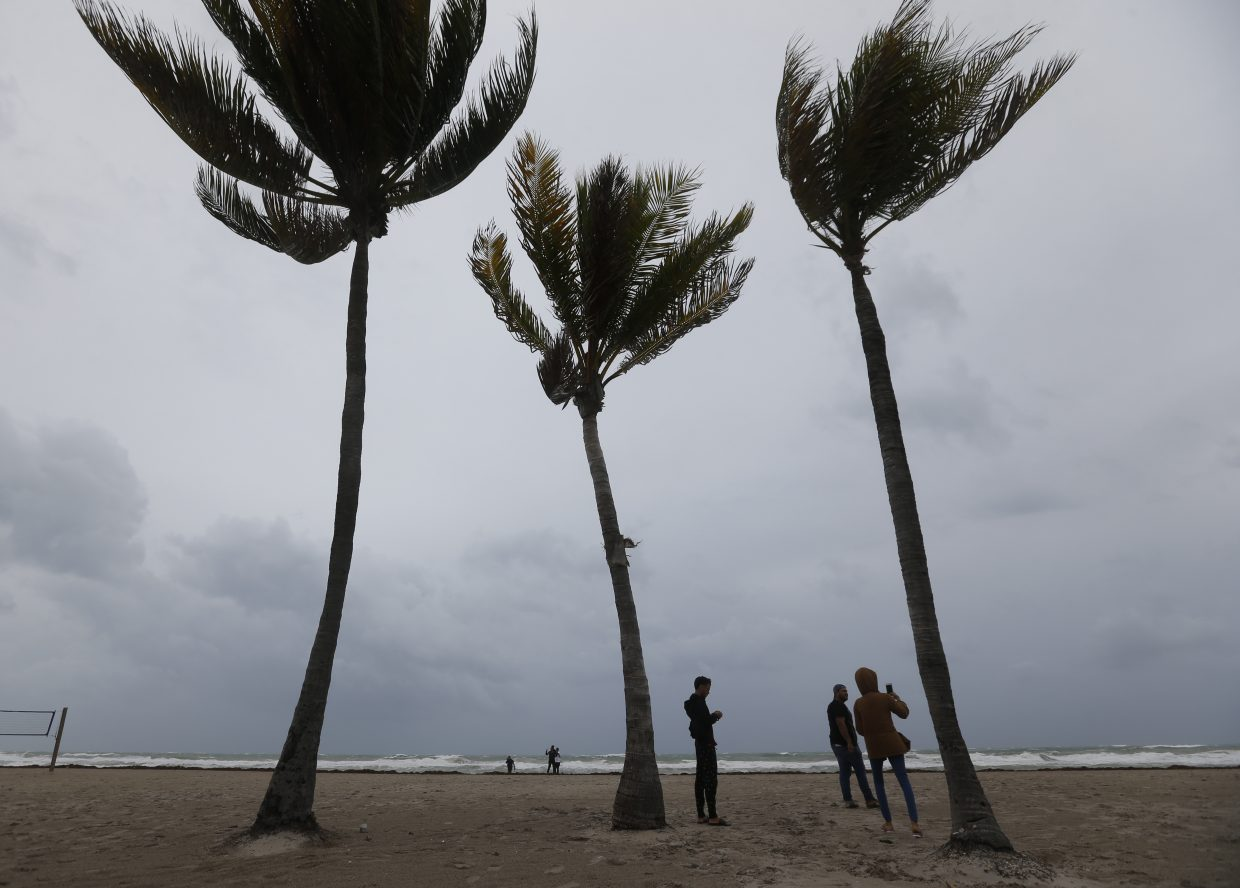 People stand next to palm trees as they look at churning waves and high winds along Hollywood Beach, Fla., on Saturday, Sept. 9, 2017. (AP Photo/Wilfredo Lee)
