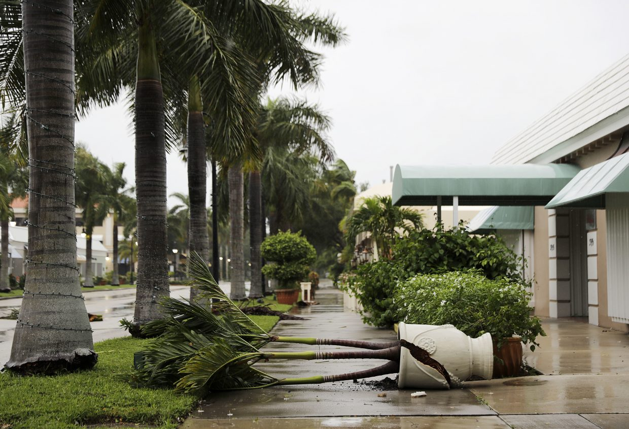 A planter is blown over from the effects of Hurricane Irma outside a business in Naples, Fla., Sunday, Sept. 10, 2017. (AP Photo/David Goldman)