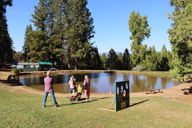 High Hill Ranch has a range of activities for kids, including trout fishing, hay rides and pony rides.