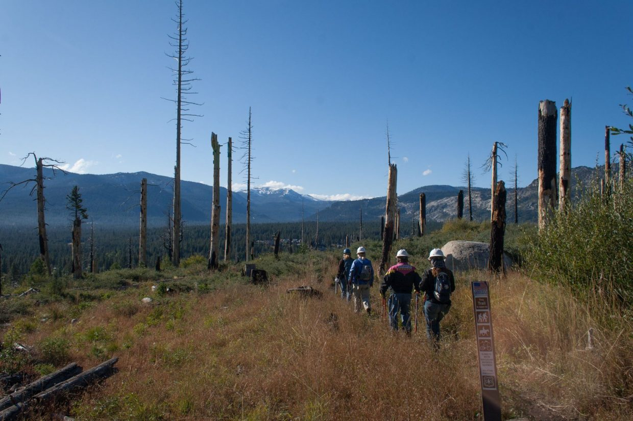 Volunteers head out to restore some trails in the Angora burn area Saturday.