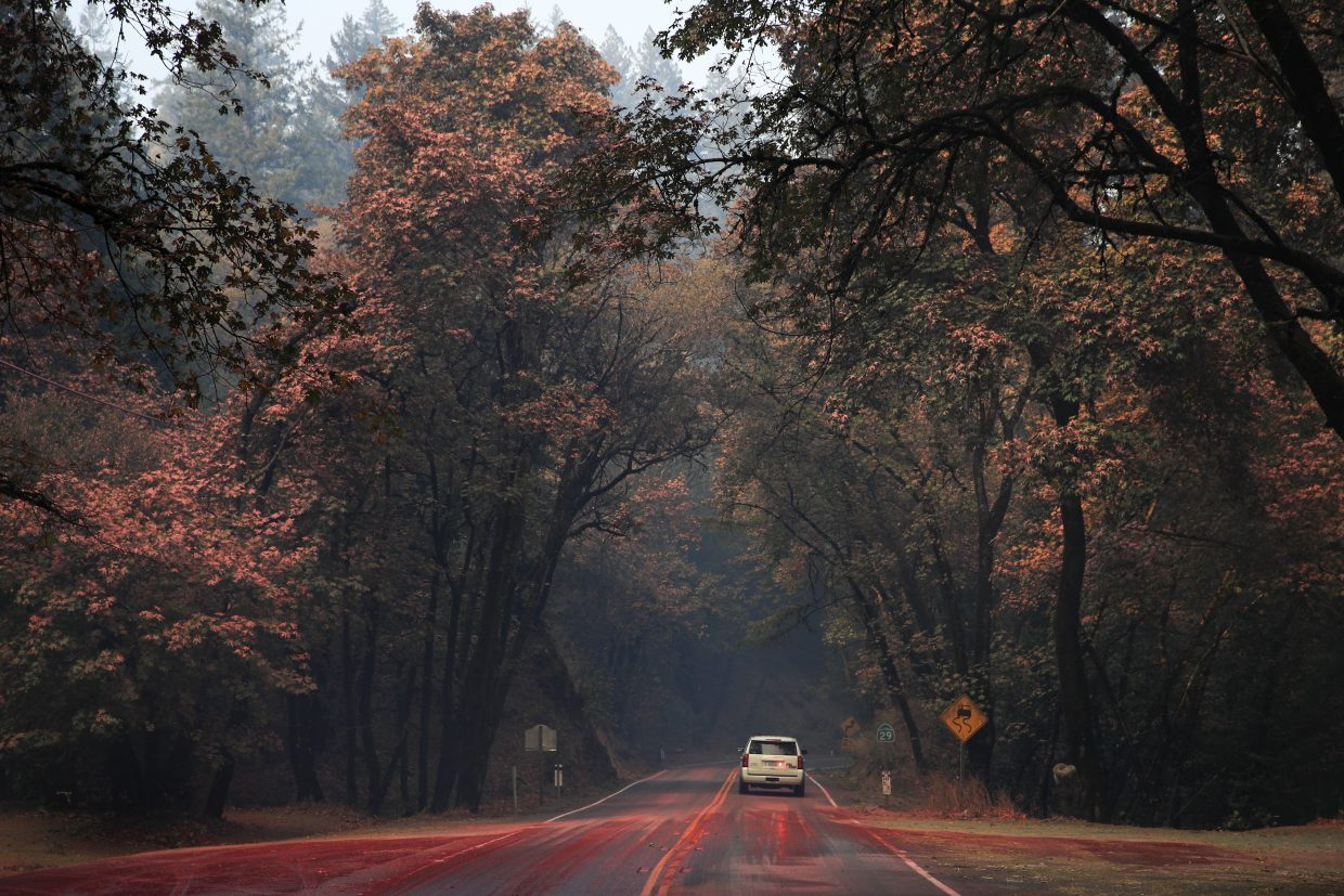 An SUV passes trees covered in fire retardant as wildfires continue to burn Thursday, Oct. 12, 2017, near Calistoga, Calif. Officials say progress is being made in some of the largest wildfires burning in Northern California but that the death toll is almost sure to surge.