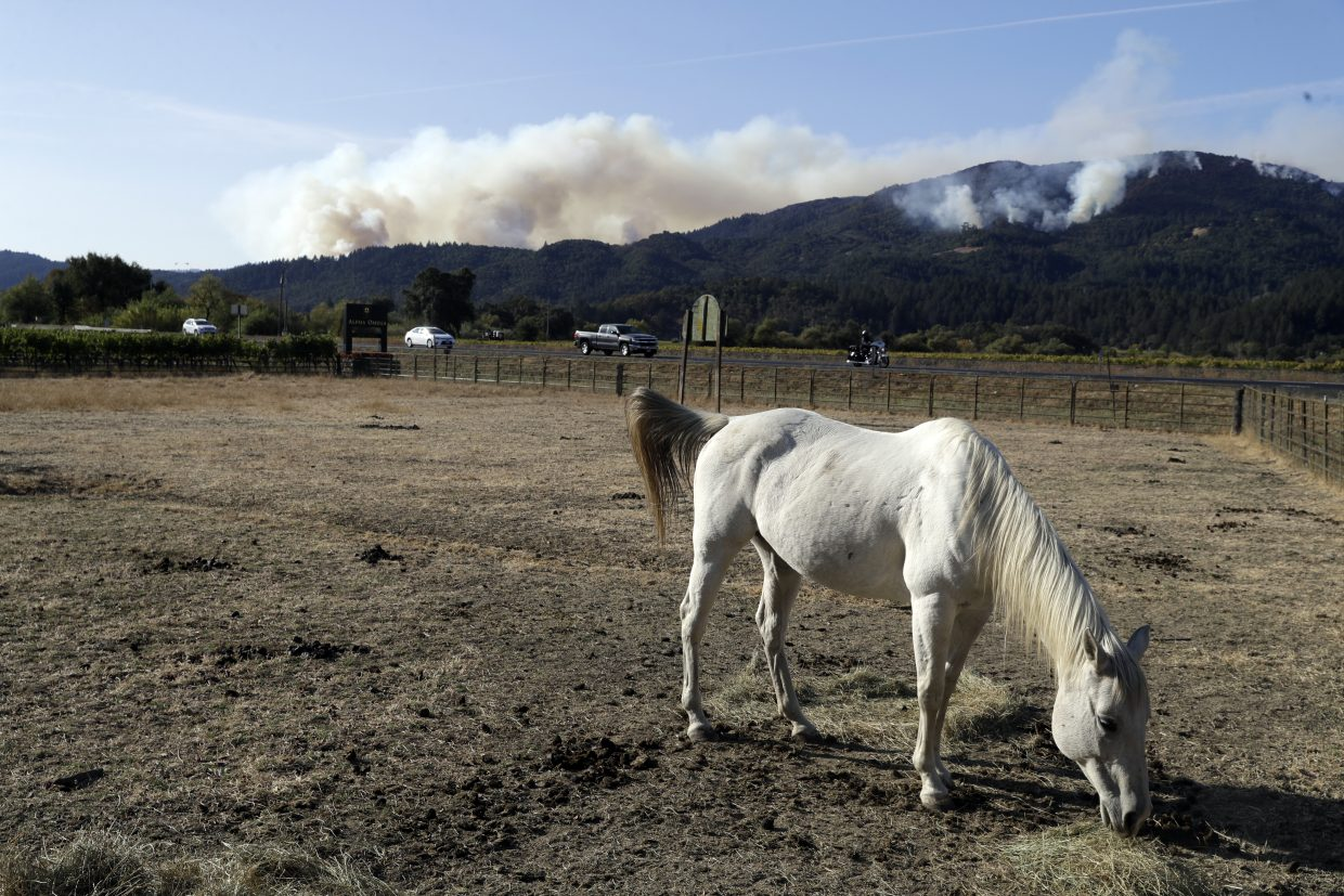 A horse grazes as smoke from a wildfire rises in the background, Sunday, Oct. 15, 2017, in Oakville, Calif. With the winds dying down, fire officials in California say they are finally getting the upper hand against the wildfires that have devastated wine country and other parts of the state over the past week.