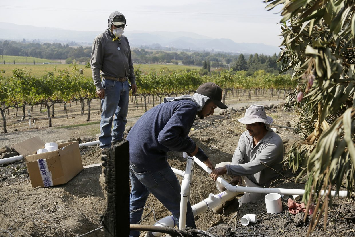 Workers at the Signorello Estate winery install new irrigation pipes to replace ones burned by wildfire Monday, Oct. 16, 2017, in Napa, Calif. State and local officials say they are trying to get people back into their homes, but they cautioned that it could take days and even weeks for neighborhoods hard hit by Northern California wildfires.