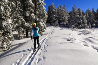 Nevada nonprofit aims to bring cross-country skiing back to Silver State