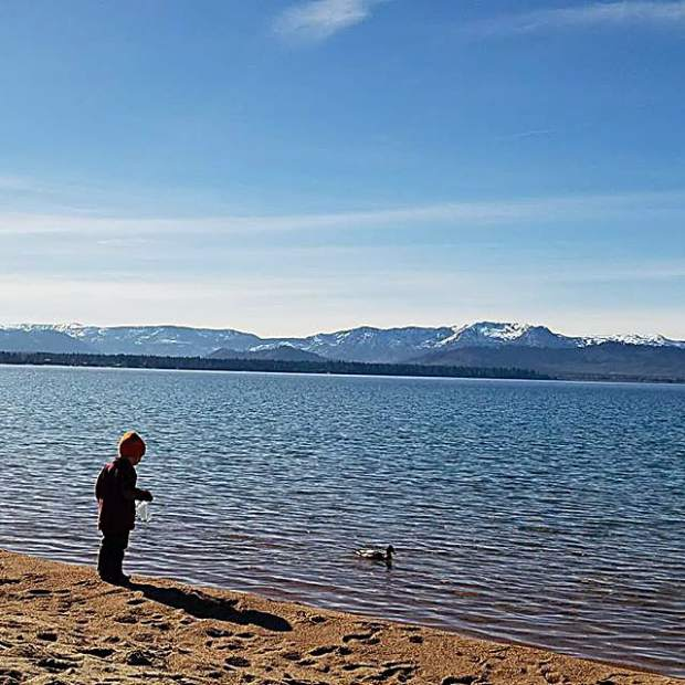 Took a walk/bike ride to Nevada Beach to enjoy this gorgeous winter day.