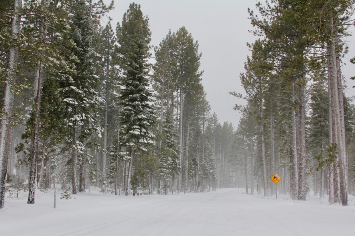 With low visibility and slick conditions, there were few cars on Highway 89 Thursday afternoon.