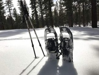 Snow Trek: Check out these 5 trails to snowshoe