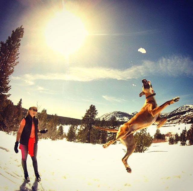 We're jumping for joy that it's Friday and #NationalPuppyDay.