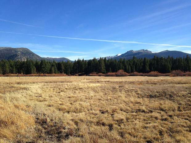 Restoration effort at Johnson Meadow for 22nd Tahoe Forest Stewardship Day