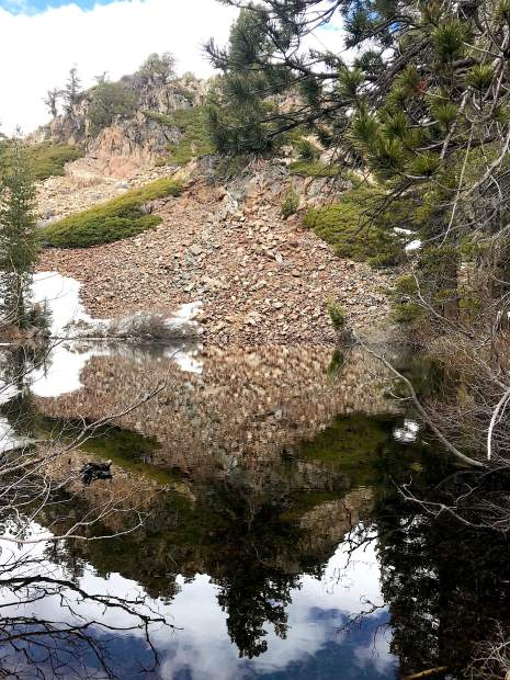 A small pond during the hike acted like a mirror.