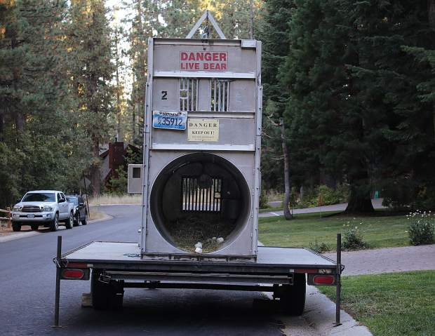 This bear trap in a neighborhood off Kingsbury Grade has reignited anger among some residents toward the bear deterrent policies of the Nevada Department of Wildlife.