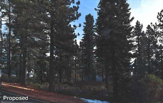 Washoe County Board of Adjustment to consider controversial cell tower proposed for Incline Village