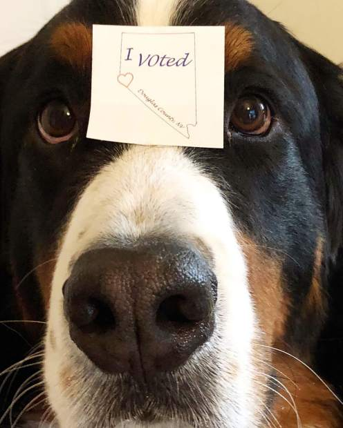 Tank voted today, did you?!
