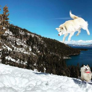 #TahoeSnaps: Stoked about spring at Lake Tahoe