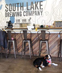 Yappy Hour at South Lake Brewing Company features discounted beer when you bring your dog