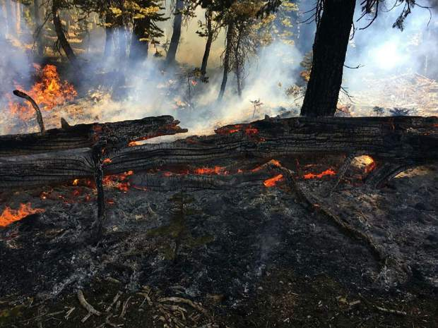 A pair of small wildfires broke out last Sunday on the north and south ends of the Tahoe Basin. Evidence in both fires points toward the use of illegal campfires.