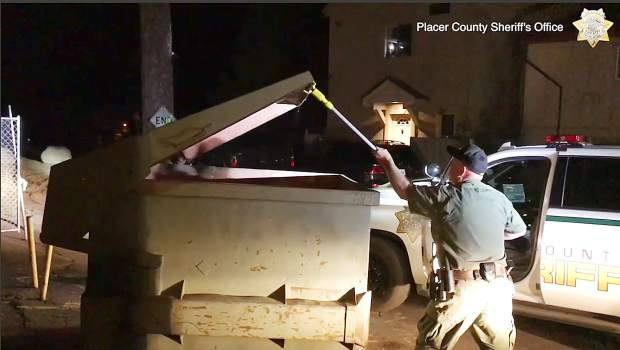 This Tuesday, Aug. 27, 2019 photo from video, second in a sequence, released by the Placer County Sheriff's Office, shows deputies using a pole to lift the lid of a trash container after a bear cub had fallen in and become trapped outside a motel in Kings Beach, Calif., on the north shore of Lake Tahoe.
