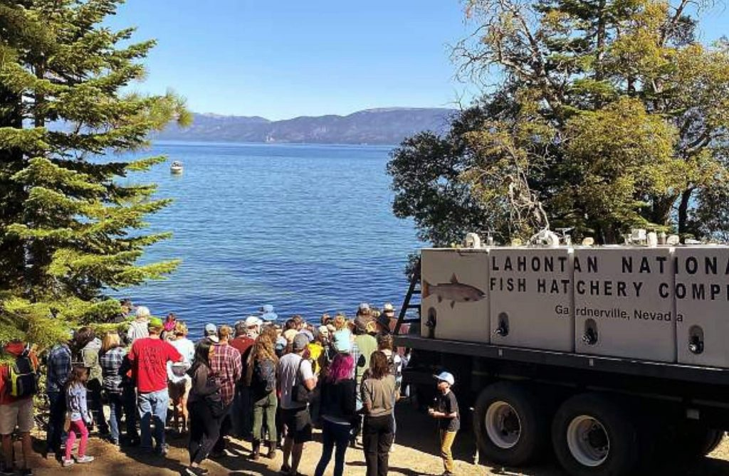 Hundreds watched a historic fish release this year at Lake Tahoe.