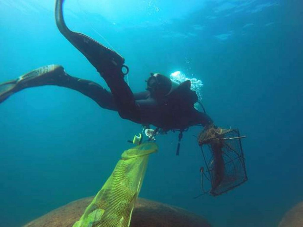 Divers plan on an unprecedented clean up of Lake Tahoe.