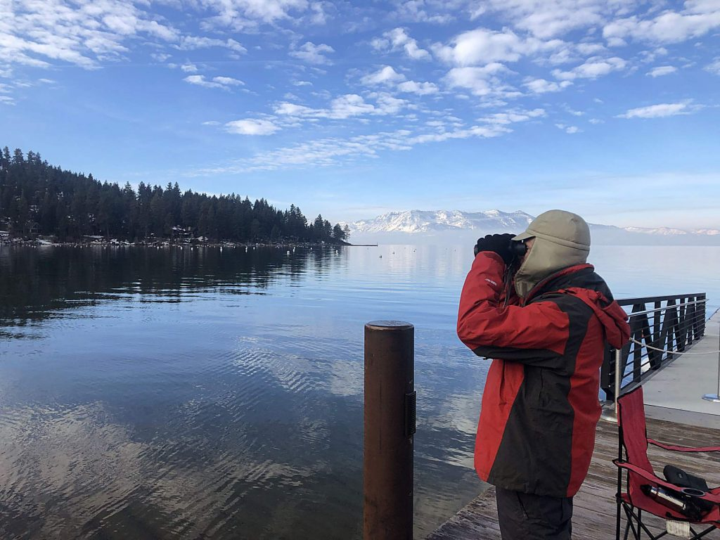 The mid-winter eagle count at Lake Tahoe is the second Friday of January.
