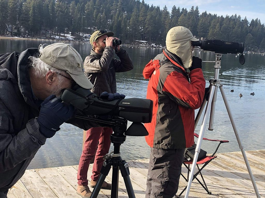 Volunteers look for bald eagles at Zephyr Cove.