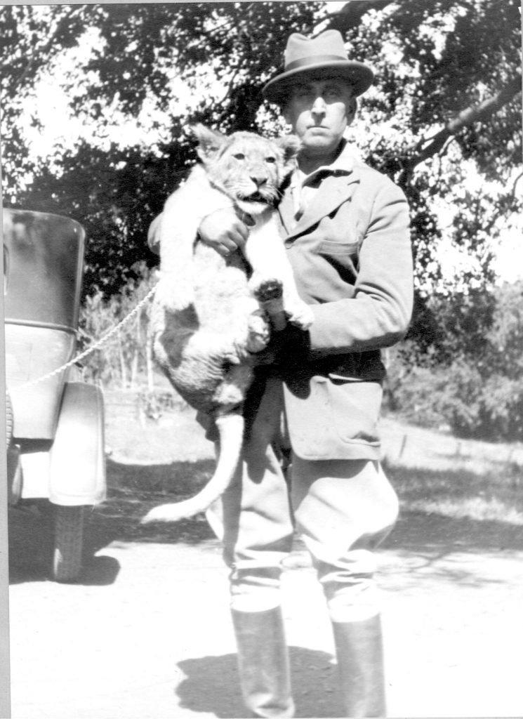 Each summer, Captain George Whittell Jr. -- who loved exotic animals -- would fly in his pet lion named Bill, seen here in this photo circa 1920 from the Thunderbird Lodge property.