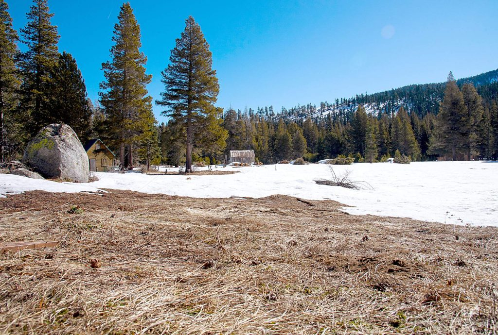 A patch of bare ground was visible during the third snow survey of the 2020 season Thursday morning at Phillips Station near Sierra-at-Tahoe.
