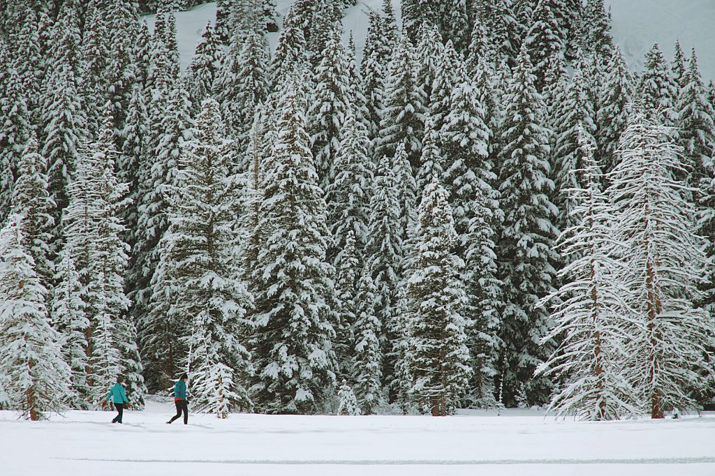 Get out in nature and snowshoe through all the fresh snow.