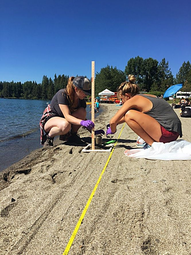 Researchers are collecting beach sediment samples.
