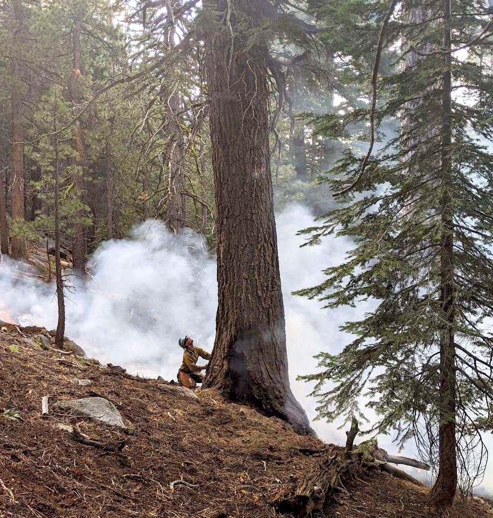 Firefighters work on the Basin 3 Fire near Luther Pass.