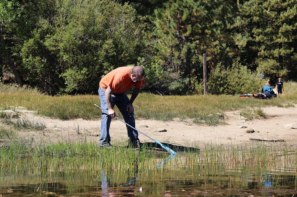 Volunteer citizen scientists survey the shoreline at Spooner Lake.